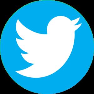 twitter ava pro audio